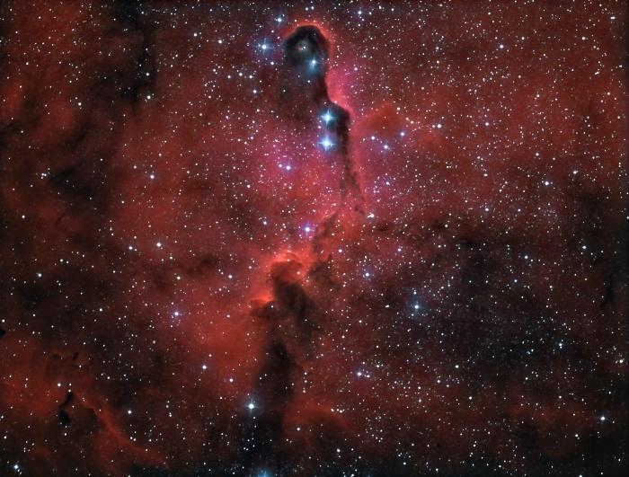 Nebulosa de la Trompa de Elefante en IC 1396 A (A. Porcel SAG/OLA)